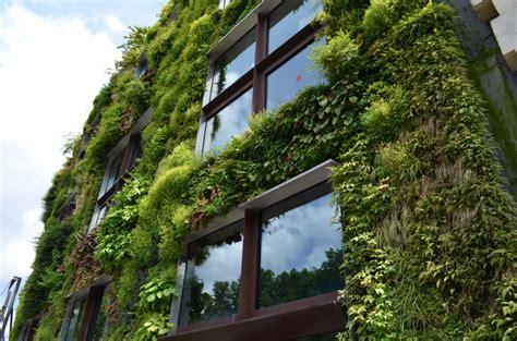 green facade   Asia Green Buildings