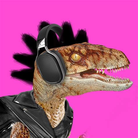 Groove Raptor   YouTube