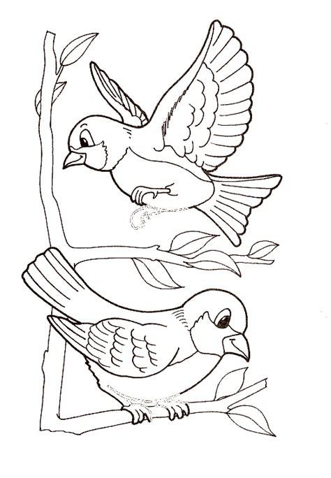 Grupo de pajaritos para dibujar   Imagui