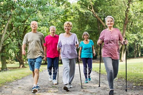 Gruppe Von Senioren Wandern Im Park Stockfoto und mehr ...