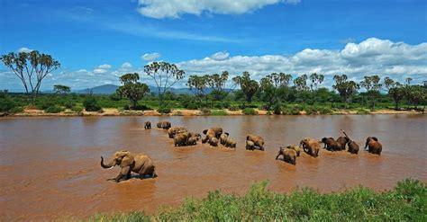 Guía de viaje para tu visita a Kenia: teléfonos y ...