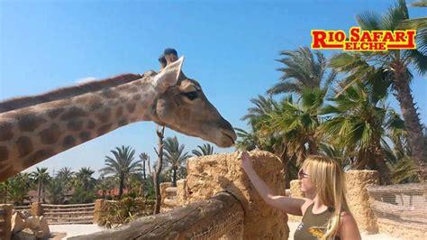 Guía de Zoos y Safaris en Alicante