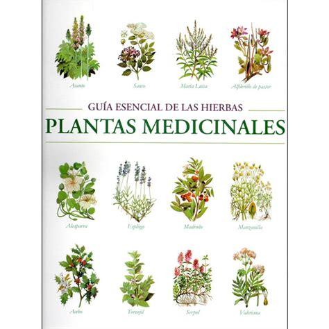 Guía esencial de las hierbas. Plantas medicinales · Libros ...