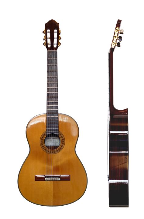 Guitarra   Wikipedia, la enciclopedia libre