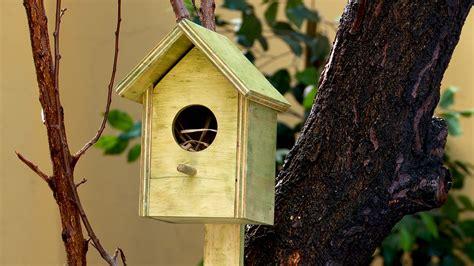 Hágalo Usted Mismo   ¿Cómo hacer una casa de pájaro?