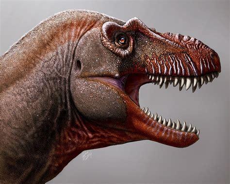 Hallan en Argentina nueva especie de pequeño dinosaurio ...