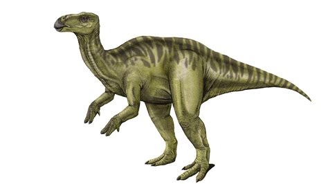 Hallaron en Argentina una nueva especie de dinosaurio ...