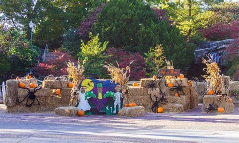 Halloween in St. Louis: Boo at the Zoo