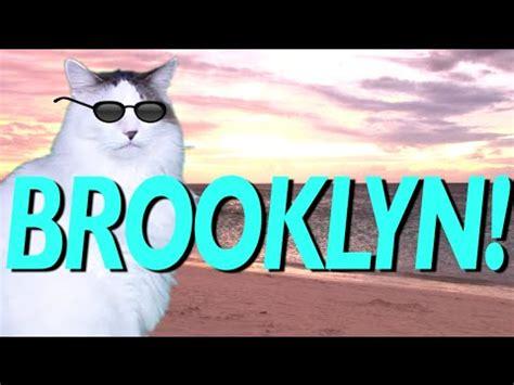 HAPPY BIRTHDAY BROOKLYN!   EPIC CAT Happy Birthday Song ...