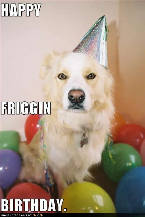 Happy Birthday Quotes For Dogs. QuotesGram