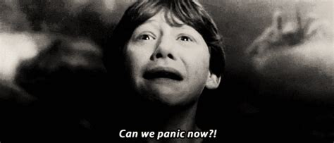 Harry Potter Panic GIF   Find & Share on GIPHY