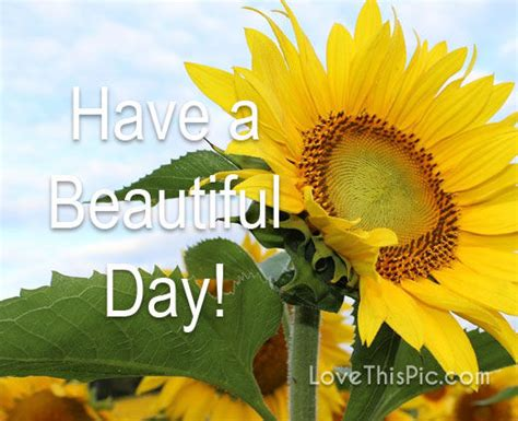Have A Beautiful Day Pictures, Photos, and Images for ...