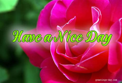 Have a Nice Day   Daily Wishes, GIFs, Pictures.