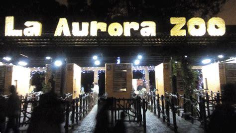 Haz un recorrido nocturno por el zoológico en las Noches ...
