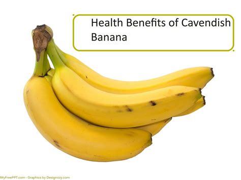 Health Benefits of Cavendish Banana by robert   Issuu