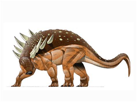 Herbivores   Dinosaur Wiki