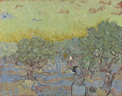 Here s looking at: Vincent Van Gogh's Olive grove with two ...