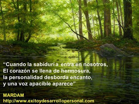 Hermosas frases en paisajes para compartir   Taringa!