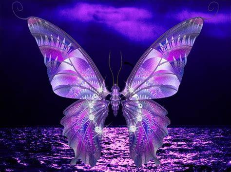 hermosas mariposas imagenes | ZOOM FRASES: fondos ...