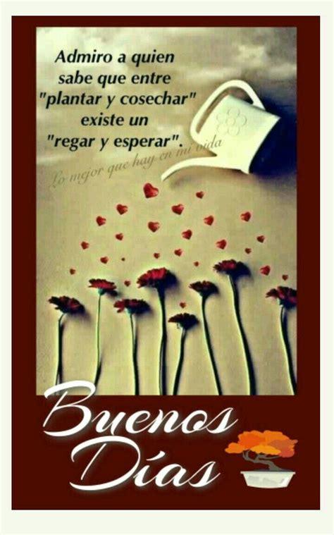 Hermoso   Frases de buenos días, Saludos de buenos dias ...