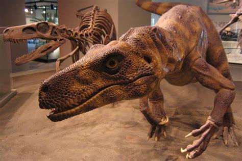 Herrerasaurus | Amigos de los Dinosaurios y la Paleontología