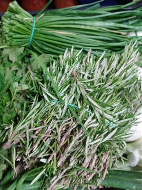 Hierbas aromáticas frescas y económicas   Verdulerías en ...