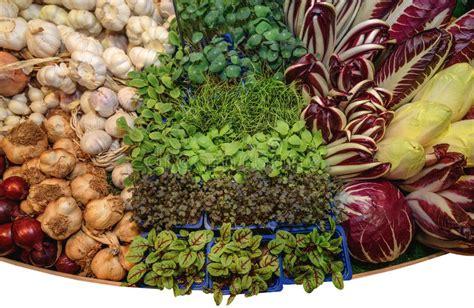 Hierbas Aromáticas Verdes Frescas, Ajo, Col, Cebolla ...