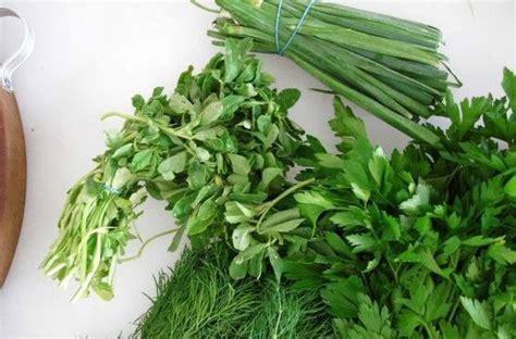 Hierbas aromáticas y especias frescas: cómo conservarlas ...