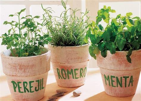 Hierbas, especias y condimentos para hacer platillos más ...