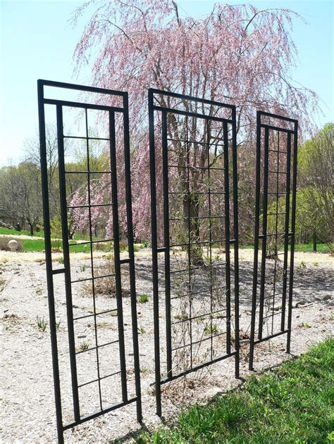 High Quality Metal Garden Trellises #4 Wrought Iron Garden ...