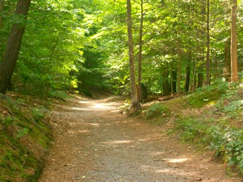 Hiking And Running Trails Near Me   ReGreen Springfield