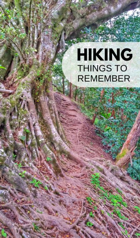 Hiking for beginners: 15 hiking tips for the trails ...