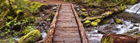 Hiking Trails Near Me   Finding The Best Local Hikes ...