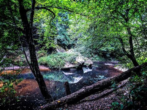 Hiking Trails Near Me With Waterfalls Alabama   Sabis ...