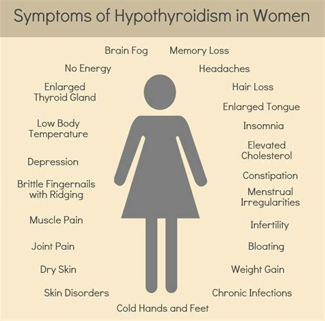 Hipotiroidismo Sintomas   SEONegativo.com