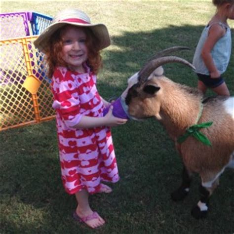 Hire We Bring the Farm to YOU!   Petting Zoo in ...