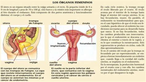 Histerectomía: consecuencias físicas y psíquicas que debes ...