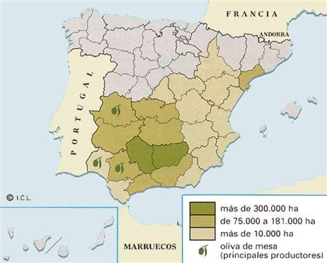 HISTORIA ANTIQUAE: El olivar en España.