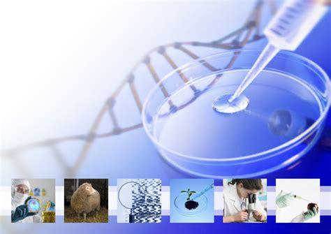 Historia   Biotecnología: Historia y Seguridad en el ...