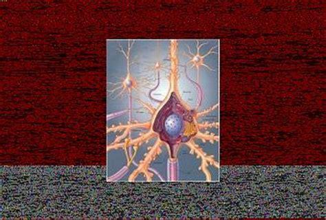 Historia de la Biología Celular   Paperblog