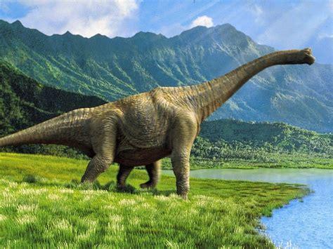 Historia Universal para principiantes: Dinosaurios