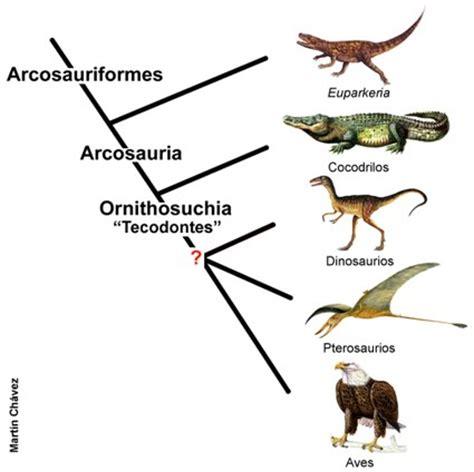 Historia y teorias  I    Paleoaeolos