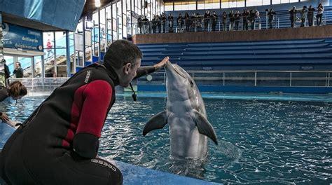 ¡Histórico! El Zoo de Barcelona cierra su delfinario ...