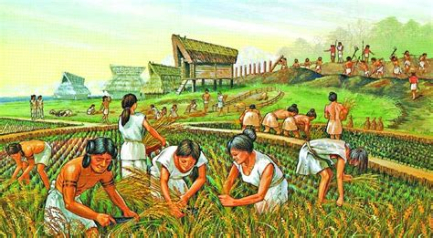 History of the agricultural revolution | The Asian Age ...