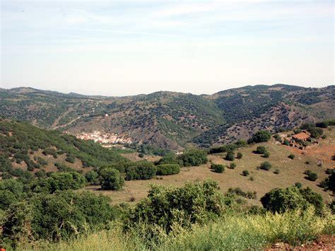 HOLÁRTICA: El bosque esclerófilo mediterráneo. Sierra del ...