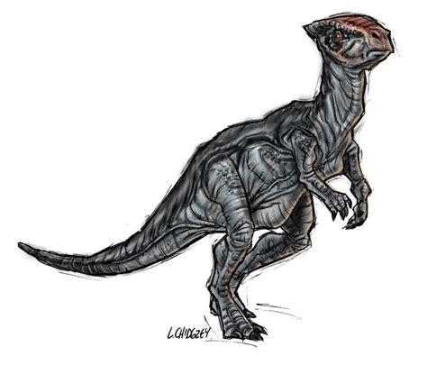 Homalocephale   Jurassic Park Wiki