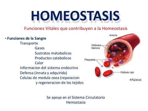 Homeostasis. – cienciasbiologiasinlimites