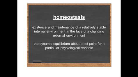 Homeostasis Video 2: Homeostasis Defined   YouTube
