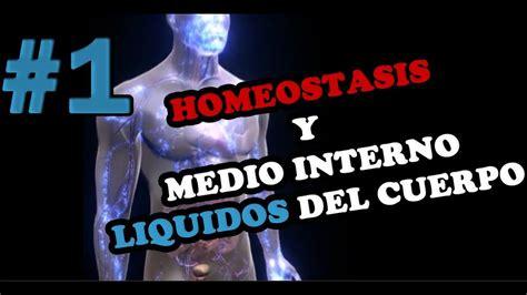 HOMEOSTASIS Y MEDIO INTERNO  Retroalimentación Positiva y ...