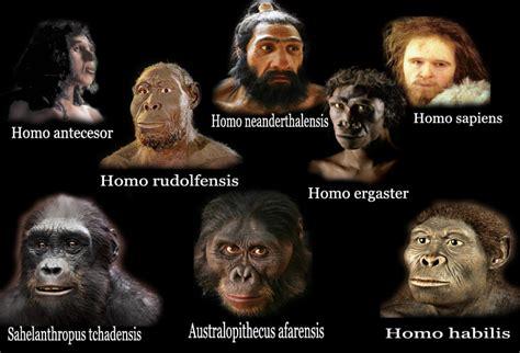 Homínidos – La era cenozoica